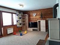Obývací pokoj s krbovými kamny - chata ubytování Černý Důl - Čistá v Krkonoších