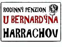 Harrachov - penzion na horách - 20