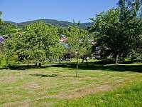 zahrada u chaloupky - chata ubytování Rokytnice nad Jizerou