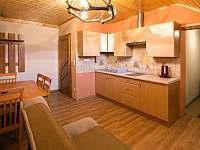 Kuchyň v apartmánu - pronájem Svoboda nad Úpou