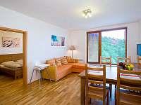 Apartmány na sjezdovce - apartmán k pronajmutí - 11 Rokytnice nad Jizerou