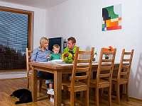 Apartmány na sjezdovce - apartmán ubytování Rokytnice nad Jizerou - 9
