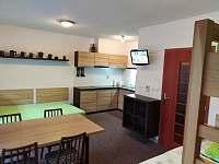 Apartmán pod sjezdovkou - apartmán k pronajmutí - 8 Prkenný Důl