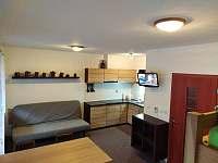 Apartmán pod sjezdovkou - pronájem apartmánu - 12 Prkenný Důl