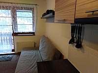 Apartmán pod sjezdovkou - apartmán - 13 Prkenný Důl