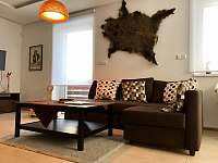 Obývák s krbem - apartmán ubytování Pec pod Sněžkou
