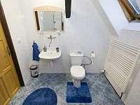 koupelna se sprchovým koutem - pronájem chalupy Horní Maršov