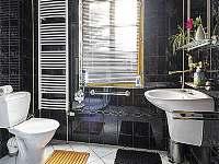 Koupelna se sprchovým koutem v přízemí - rekreační dům k pronajmutí Trutnov
