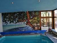 Vnitřní bazén - Vaše soukromé wellness - pronájem rekreačního domu Trutnov