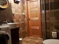 Společná koupelna - pronájem chalupy Vítkovice v Krkonoších