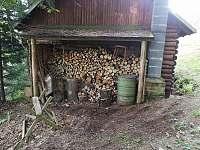 Dřevník a nádoba na odpad - Radvanice v Čechách