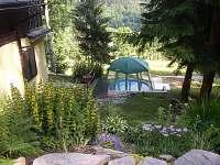 bazén - chata ubytování Dolní Dvůr