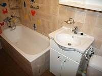 koupelna - chata k pronajmutí Dolní Dvůr