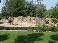 ZOO a Safari Dvůr Králové - Čermná