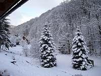 zahrada v zimě - chata k pronajmutí Prkenný Důl