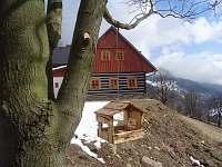 Chata Doubravka Velká Úpa - Jaro - k pronájmu