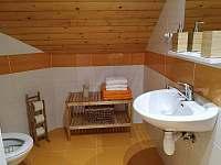 Koupelna č.1 - pronájem apartmánu Svoboda nad Úpou