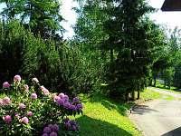 Jestřabí v Krkonoších - chata k pronájmu - 11