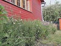zahrada 2020 - pronájem chaty Vysoké nad Jizerou