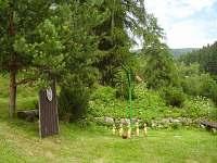 Horní Rokytnice nad Jizerou - chata k pronajmutí - 7