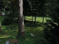 Orlí Hnízdo - chalupa ubytování Černý Důl - 9