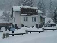ubytování Nový Nemojov na chatě