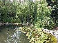 na zahradě je rybníček