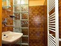 apart.č.2 - koupelna - Rokytnice nad Jizerou