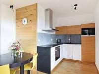 Horsky Apartmán - apartmán k pronájmu - 10 Vrchlabí