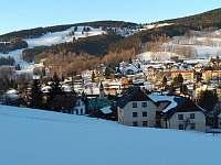 Pohled z kopce na dům a okolí - apartmán k pronajmutí Rokytnice nad Jizerou