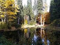 Rybník za chalupou - Harrachov