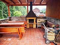 grill - apartmán k pronajmutí Svoboda nad Úpou