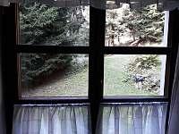 výhled z kuch.koutu - chata k pronajmutí Úbočí - Místo
