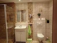 Apartmán Pod Božím Darem - apartmán - 23 Jáchymov