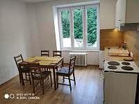 Kuchyně s jídelnou - apartmán ubytování Jáchymov