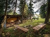 Horská chata pod Klínovcem - chata k pronájmu - 10 Loučná pod Klínovcem