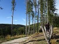 Loupežnická stezka - cvičící okruh - Kraslice - Tisová