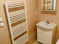 Koupelna - apartmán k pronájmu Klášterec nad Ohří