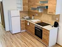 Kuchyně - apartmán k pronájmu Klášterec nad Ohří