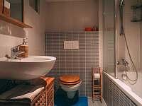 Koupelna v apartmánu - chalupa k pronájmu Boží Dar