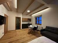 Apartmán 1 - pro 2-4 osoby - k pronajmutí Boží Dar