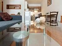 ubytování na Chomutovsku Apartmán na horách - Loučná pod Klínovcem