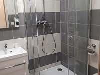 Koupelna s WC. - apartmán k pronájmu Loučná pod Klínovcem