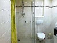 koupelna - pronájem apartmánu Jáchymov
