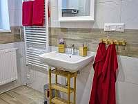 Apartmán AB C306 - koupelna - pronájem Loučná pod Klínovcem