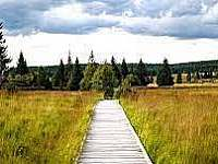 Krušné hory v létě - Loučná pod Klínovcem