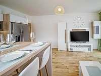 Aparthotel Klinovec Views - apartmán k pronájmu - 6 Loučná pod Klínovcem
