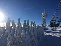 Aparthotel Klinovec Views = 500 m od Skiareálu Klínovec - pronájem Loučná pod Klínovcem