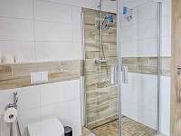 Vzorová koupelna se sprchovým koutem - apartmán k pronájmu Loučná pod Klínovcem