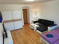 Apartmán Albreit - apartmán k pronájmu - 10 Jáchymov